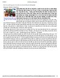 Bảo tồn và phát huy giá trị di sản văn hóa và danh thắng tỉnh Quảng Ngãi
