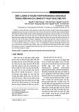 Định lượng vi khuẩn Porphyromonas gingivalis trong viêm nha chu bằng kỹ thuật Realtime PCR
