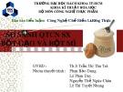 Bài giảng Công nghệ chế biến - Bài: So sánh quy trình công nghệ sản xuất bột gạo và bột mì
