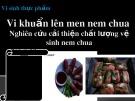 Bài giảng Công nghệ thực phẩm - Bài: Vi khuẩn lên men nem chua