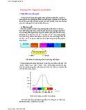 Bài giảng Vật lý - Chương 16: Nguyên lý truyền hình