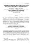Tác dụng diệt khuẩn của dịch chiết lá sim và hạt sim (Rhodomyrtus tomentosa) đối với vi khuẩn gây bệnh hoại tử gan tụy cấp trên tôm nuôi nước lợ