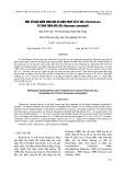 Một số đặc điểm sinh học và biện pháp xử lý đỉa (Piscicola sp.) ký sinh trên rùa voi (Heosemys annandalii)