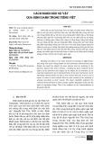 Cách đánh dấu sự vật qua định danh trong Tiếng Việt