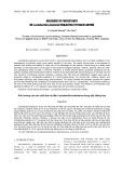 Ảnh hưởng của các chất bảo vệ đến Lactobacillus plantarum trong sấy thăng hoa