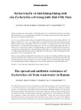 Sự lan truyền và tính kháng kháng sinh của Escherichia coli trong nước thải ở Hà Nam