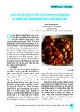 Cách chế biến một số món ăn đặc trưng của người dân xã Quảng Kim, huyện Quảng Trạch, tỉnh Quảng Bình