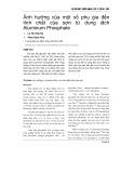 Ảnh hưởng của một số phụ gia ñến tính chất của sơn từ dung dịch Aluminum Phosphate