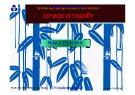 Bài giảng Cơ học lý thuyết - PGS. TS. Trương Tích Thiện