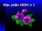 Bài giảng Sinh học đại cương - Chương 1: Sự phát triển của cấu tạo cơ thể thực vật