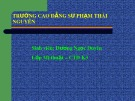 Bài giảng Mỹ thuật - Bài 21: Thường thức mỹ thuật - Một số tác phẩm tiêu biểu của mỹ thuật Việt Nam từ cuối thế kỷ XIX đến 1954