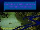 Bài giảng Mỹ thuật - Bài 11: Vẽ trang trí - Trình bày bìa quyển sách