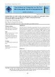 Ảnh hưởng của mức nước, mật độ ương và lượng giá thể khác nhau lên tỷ lệ sống của ấu trùng cua biển (scylla paramamosain) giai đoạn megalop đến cua 1