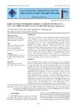 Khảo sát hoạt tính kháng khuẩn và kháng oxy hoá của các cao chiết từ thân và lá cây Bọ Mắm (Pouzolzia zeylanica L.)