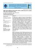 Hiện trạng nhiễm ký sinh trùng trên cá bớp (Rachycentron Canadum) nuôi lồng ở tỉnh Kiên Giang