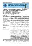 Ảnh hưởng của Paclobutrazol và thời điểm phun Thiourea lên sự ra hoa và năng suất chanh tàu tại huyện Cao Lãnh, tỉnh Đồng Tháp