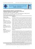 Đánh giá hiệu quả kinh tế và tiết kiệm nước mô hình tưới phun mưa tự động cho cây hành tím tại huyện Vĩnh Châu, tỉnh Sóc Trăng