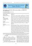 Tối ưu hóa sơ chế rong nho (Caulerpa lentillifera J.AGARDH, 1837) sau thu hoạch