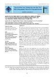 Khảo sát sự hiện diện và xác định các gene gây bệnh của vi khuẩn Salmonella Weltevreden trên thằn lằn tại tỉnh Sóc Trăng, Tiền Giang và Bến Tre