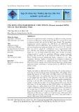 Ứng dụng công nghệ biofloc ương tôm sú giống với các mật độ khác nhau