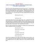 Phân tích ba đoạn đầu trong bài thơ Đàn ghita của Lorca (Thanh Thảo)