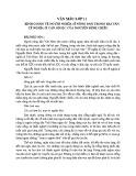 Bình giảng về người nghĩa sĩ nông dân trong bài Văn Tế Nghĩa Sĩ Cần Giuộc của Nguyễn Đình Chiểu