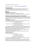 Chuyên đề 4: Ba đoạn trích Truyện Kiều