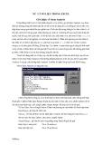Bài giảng Xử lý dữ liệu trong sinh học với phần mềm Excel - Bài 1: Xử lý số liệu trong Excel