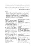 Nghiên cứu một số đặc điểm bệnh lý của hội chứng rối loạn sinh sản và hô hấp (PRRS) ở lợn tại tỉnh Bắc Ninh