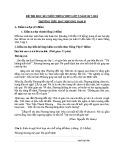 Đề thi học kì 2 môn Tiếng Việt lớp 5 năm 2017-2018 - Trường Tiểu học Phương Nam B