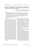 Mua bán và sáp nhập (M&A) ngân hàng tại Việt Nam – Những vấn đề đặt ra từ thương vụ sáp nhập Ngân hàng Thương mại Cổ phần Sài Gòn – Đệ Nhất – Tín Nghĩa