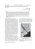 Biên giới 1950 – Bước ngoặt của cuộc chiến tranh Đông Dương (1945 - 1954)