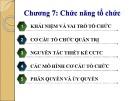 Bài giảng Quản trị học - Chương 7: Chức năng tổ chức