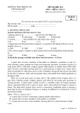 Đề thi HK 1 môn tiếng Anh lớp 11 năm 2017-2018 - THPT Krông Nô - Mã đề 485