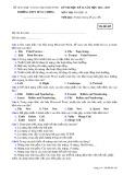 Đề thi HK 2 môn Tin học lớp 10 năm 2014-2015 - THPT Hùng Vương - Mã đề 485