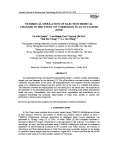 Numerical simulation of electrochemical changes in the study of corrosion in an occluded