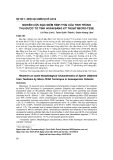 Nghiên cứu đặc điểm hình thái của tinh trùng thu được từ tinh hoàn bằng kỹ thuật Micro-TESE