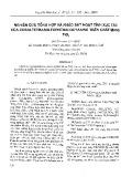 Nghiên cứu tổng hợp và khảo sát hoạt tính xúc tác của cobaltetrasulfophthalocyaine trên chất mang TiO2