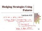 Lecture Financial derivatives - Lecture 10: Hedging strategies using futures