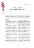 Tổng quan về vu hích và shaman giáo