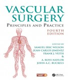 Ebook Vascular surgery principles and practice (4/E): Part 1