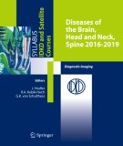 Ebook Diseases of the brain, head and neck, spine 2016–2019: Part 1