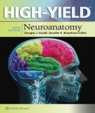 Ebook High – Yield neuroanatomy (5/E): Part 1