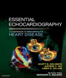 essential echocardiography - a companion to braunwald's heart disease: part 2