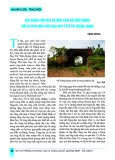 Địa danh Cồn Đài và mối liên hệ ngữ nghĩa với di tích đền thờ Đào Duy Từ ở Võ Thắng Quan