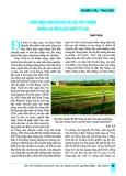 Hàm Ninh chuyển đổi cơ cấu cây trồng mang lại hiệu quả kinh tế cao