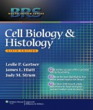 Ebook BRS - Cell biology and histology (6/E): Part 1