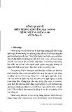 Tổng quan về hiện tượng chuyển loại trong tiếng Việt và tiếng Anh