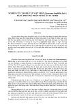 Nghiên cứu tạo rễ cây mật nhân (eurycoma longifolia jack.) bằng phương pháp nuôi cấy in vitro