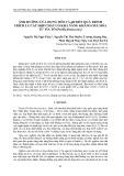 Ảnh hưởng của dung môi và pH đến quá trình trích ly các hợp chất có khả năng kháng oxy hóa từ tía tô (perilla frutescens)